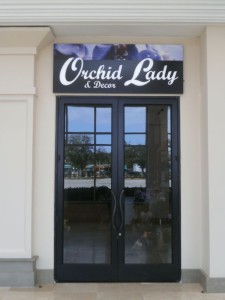 Orchid Lady Illuminated Wall Sign